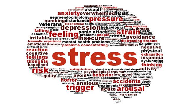 Эссе на английском про стресс 2218