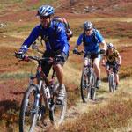 biking— Катание на велосипеде