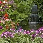 Garden— сад