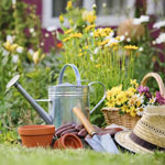 gardenings— садоводство