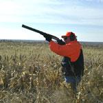huntings— Охота