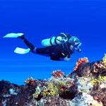 scuba diving - Подводное плавание с аквалангом