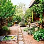 Yard— двор, сад
